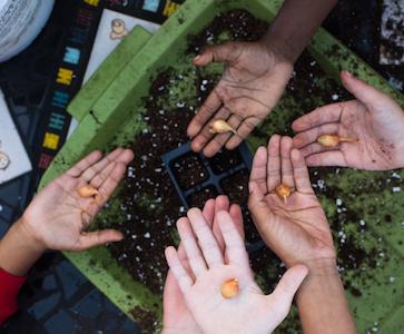 Kids in garden planting seeds